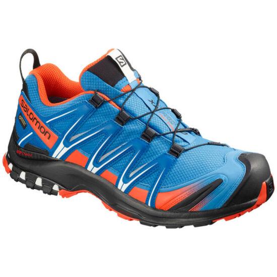 Salomon XA Pro 3D GTX cipő